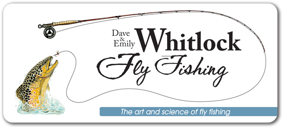 Dave & Emily Whitlock